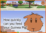 How quickly can you feed your Guinea Pig? Game